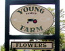 Young Family Farm | Little Compton, RI 02837